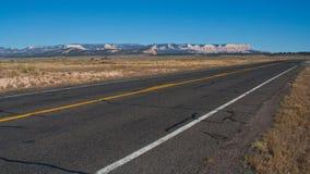 2片沙漠路 免版税图库摄影