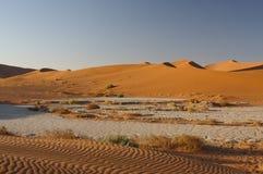 2片沙漠namib 库存照片