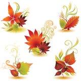 2片秋天五颜六色的叶子被设置的向量 免版税库存照片
