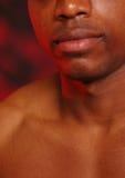 2片非洲裔美国人的嘴唇 库存图片