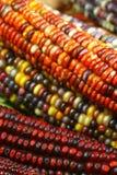 2玉米印地安人 库存照片