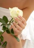 2玫瑰花蕾 库存照片