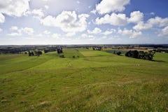 2种田的横向新西兰 库存图片