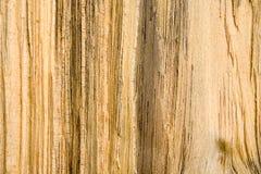 2种谷物纹理木头 库存图片