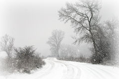 2第一个s雪冬天 库存照片