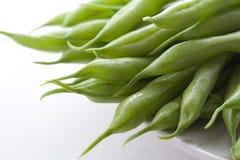 2粒豆绿色 免版税图库摄影