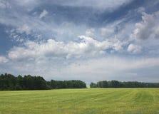 2绿色横向夏天 免版税库存照片