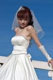 2美好的新娘桥梁白色 库存图片