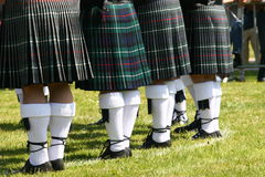 2苏格兰男用短裙 库存图片