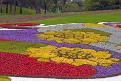 2草坪模式 免版税图库摄影