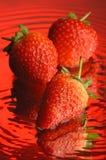 2草莓 免版税库存照片