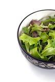 2蔬菜沙拉 免版税库存图片