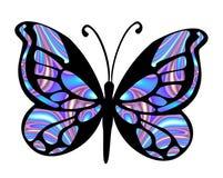 2蝴蝶 库存图片