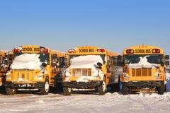 2辆公共汽车学校冬天 图库摄影