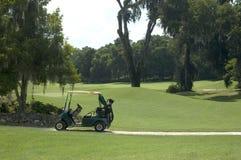 2辆购物车高尔夫球 库存照片