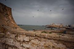 2颗城市essaouira摩洛哥老葡萄牙 图库摄影