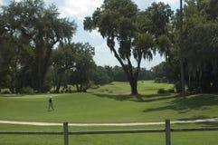 2高尔夫球绿色 库存照片