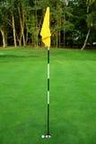 2高尔夫球 免版税库存图片