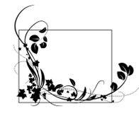 2黑色装饰品蔬菜 库存图片