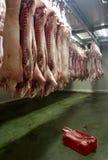 2 świeżego mięsa Obraz Royalty Free