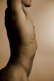 2 αρσενικός nude Στοκ Εικόνες