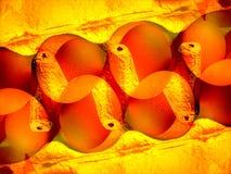 2 αυγά καρτών κιβωτίων Στοκ εικόνα με δικαίωμα ελεύθερης χρήσης