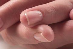 2 θηλυκά χέρια Στοκ Φωτογραφίες