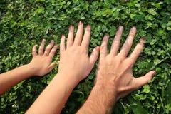 2 οικογενειακά χέρια Στοκ εικόνα με δικαίωμα ελεύθερης χρήσης