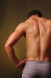 2 πίσω αρσενικός μυϊκός Στοκ Εικόνα