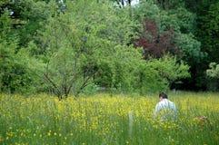 2 πεδία της Ανδαλουσίας Στοκ φωτογραφία με δικαίωμα ελεύθερης χρήσης