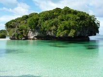 2 πεύκα νησιών στοκ εικόνες με δικαίωμα ελεύθερης χρήσης