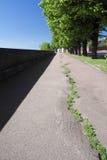 2 πράσινες σειρές Στοκ εικόνα με δικαίωμα ελεύθερης χρήσης