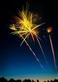 2 πυροτεχνήματα ημέρας του Καναδά πέρα από το treeline Στοκ Εικόνα