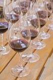 2 σειρές δοκιμάζοντας κρασιού Στοκ εικόνα με δικαίωμα ελεύθερης χρήσης