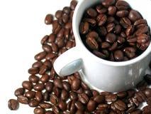 2 σειρές καφέ στοκ εικόνα