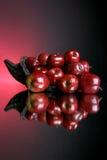 2 σειρές μήλων στοκ φωτογραφίες