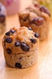2 τρελλό muffin σύνολο Στοκ Φωτογραφία