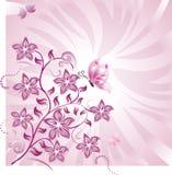 2 абстрактных флористического Стоковые Изображения RF