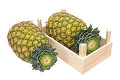 2 ананаса Стоковые Фотографии RF