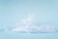 2 белых пера на свете - голубой linen предпосылке Стоковая Фотография RF