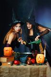 2 ведьмы halloween Стоковые Изображения RF