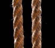 2 веревочки на черной предпосылке Стоковое Изображение