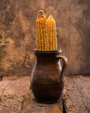 2 высушенных corns Стоковое Изображение