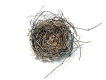 2 гнездй 08 птиц Стоковое Изображение RF