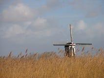 2 голландеца landscape тростник Стоковое Изображение RF