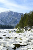 2 горы altai Стоковая Фотография RF