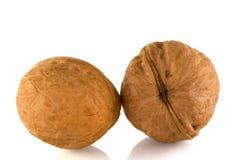 2 грецкого ореха стоковые изображения rf