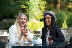 2 девушки выпивая чай Стоковые Фотографии RF