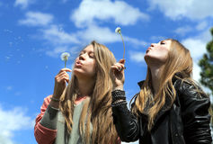 2 девушки дуют на одуванчиках Стоковая Фотография RF