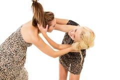 2 девушки присягают и воюют Стоковая Фотография RF